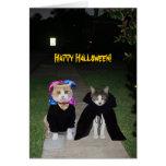 Grappige Katten Halloween Wenskaart