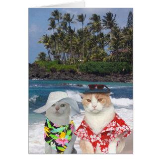 Grappige Katten Hawaiiaans Valentijn Kaart