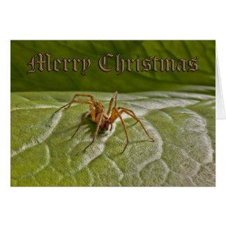 Grappige Kerstkaart Briefkaarten 0