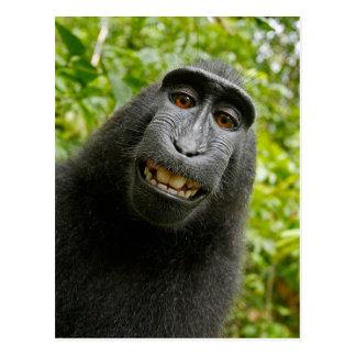 Grappige KuifAap die Selfie glimlachen Briefkaart