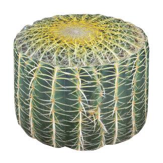 Grappige Ongemakkelijke Tropische Cactus Poef
