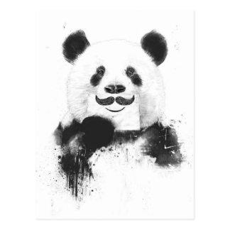 Grappige panda briefkaart