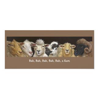 Grappige schapenkaart 10,2x23,5 uitnodiging kaart