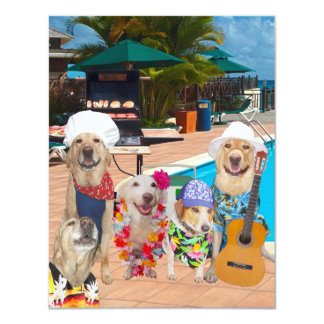 Grappige van Honden Klantgerichte van de Pool Kaart