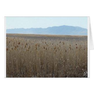 Great Salt Lake shorelands domein Kaart