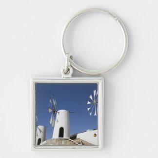 GRIEKENLAND, KRETA, Iraklio Provincie, Ano Kera: Zilverkleurige Vierkante Sleutelhanger