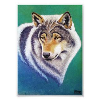 grijs wolfs dierlijk portret in de druk van de fotoprints