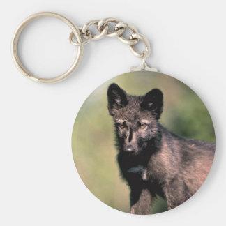 Grijze de wolf-Zomer (zwart-fase) welp Sleutelhanger