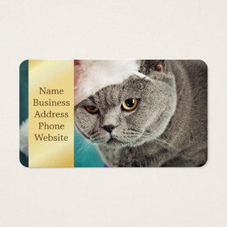 Grijze kattenKerstmis - de kat van Kerstmis - Visitekaartjes