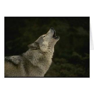 Grijze Wolf Kaart