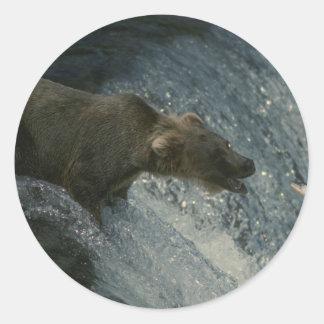 Grizzly afbeelding-Vist voor Zalm Ronde Sticker