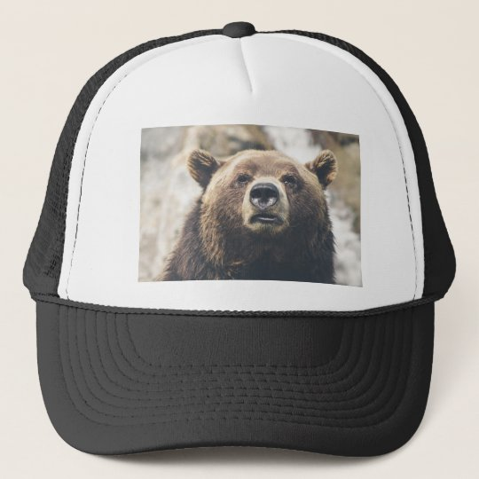 Grizzly bear trucker pet
