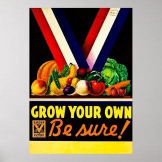 Groei Uw - Zeker ben! Vintage Wereldoorlog II Poster