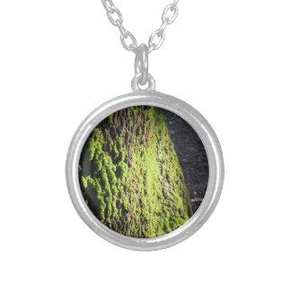 Groen mos in natuurDetail van mos behandelde Zilver Vergulden Ketting