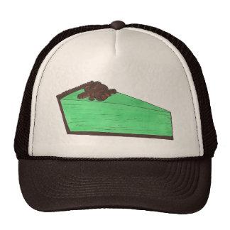 Groen Muntachtig St Patrick van de Plak van de Petten