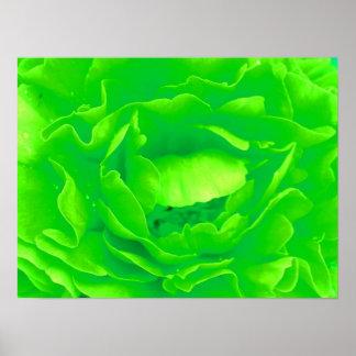 Groen nam Poster toe