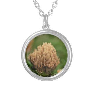 Groene bevlekkende koraalpaddestoelen (abietina zilver vergulden ketting
