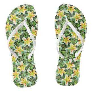 Groene Blad Botanische Aloha van de Lelies van de Teenslippers