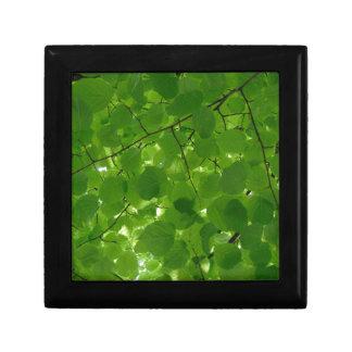 Groene Bladeren Decoratiedoosje