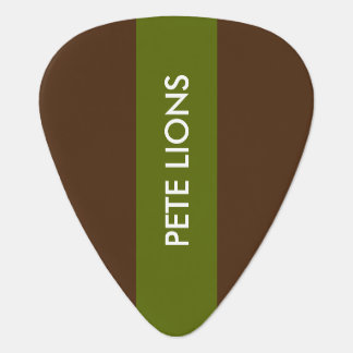 groene en bruine gitaaroogst met naam plectrum