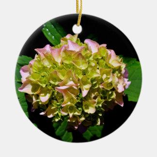 Groene en roze Hydrangea hortensia Rond Keramisch Ornament