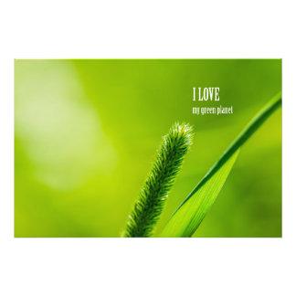 Groene Gras en Zon - de liefde van I mijn groene Foto Print