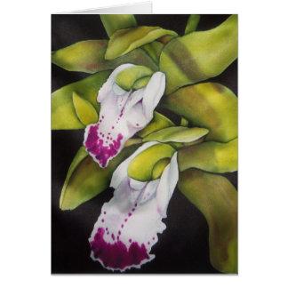Groene Orchidee Cymbidium Briefkaarten 0