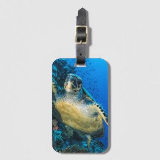 Groene Schildpad | van het Zee Rood Zee Kofferlabel