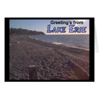 Groet van het Strand van Erie Ohio van het Meer Briefkaarten 0