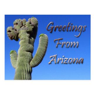 Groeten van Arizona Briefkaart