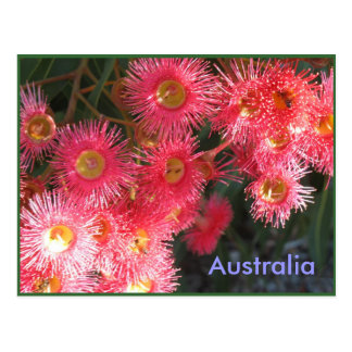 Groeten van Australië Briefkaart
