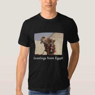 Groeten van Egypte! Shirt