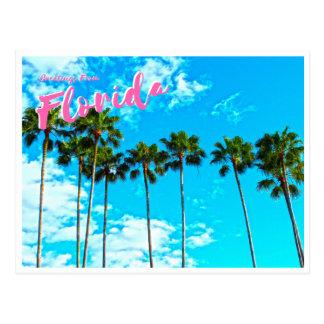 Groeten van Florida Briefkaart