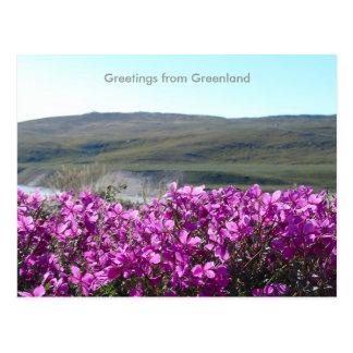 Groeten van Groenland 10 Briefkaart