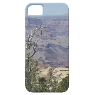 Grote Canion Arizona Barely There iPhone 5 Hoesje