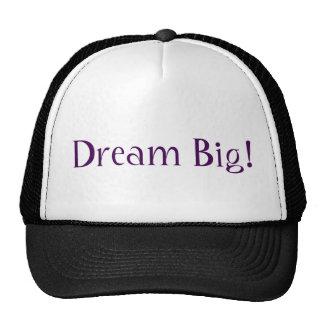 Grote droom! pet