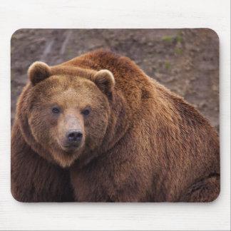 Grote Kodiak draagt Muismat
