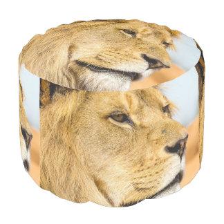 Grote leeuw die veel weg eruit zien poef