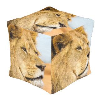 Grote leeuw die veel weg eruit zien vierkante poef