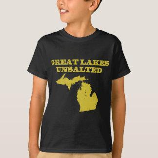 Grote Ongezouten Meren T Shirt