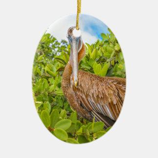 Grote Pelikaan bij Boom, de Galapagos, Ecuador Keramisch Ovaal Ornament