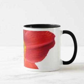 Grote Rode Lelie Mok