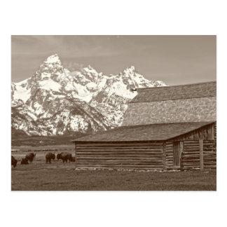 Grote Tetons van Mormoonse Rij Briefkaart