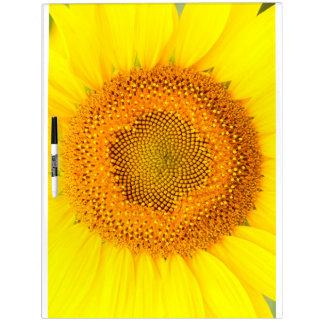 Grote wist Droog van de zonnebloem Raad Whiteboards