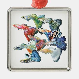 Guppies Zilverkleurig Vierkant Ornament