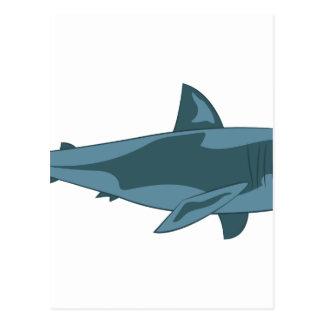 Haai Briefkaart
