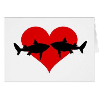 Haaien Briefkaarten 0