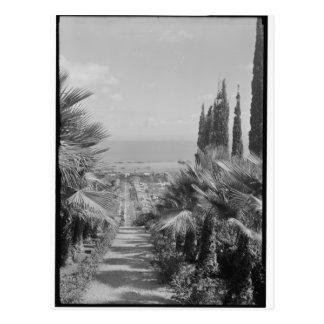 Haifa - van Mt. Carmel, jaren '20 Briefkaart