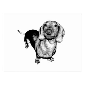 Halftone Zwart-witte Dachsund Doxie van de Foto Briefkaart