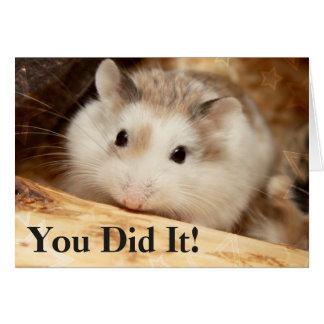 Hammyville - de Gelukwensen van de Hamster Briefkaarten 0